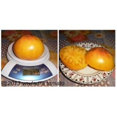 томат Huge Lemon Oxheart
