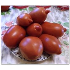 томат Лапоть из Садовки