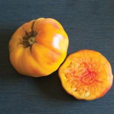 Каталог сортов томатов 2020-2021 года