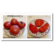 томат Тырновский розовый