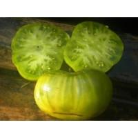 Cherokee Lime