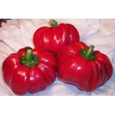 перец Super Red Pimento (Супер красный Пименто)