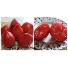 томат Японка (Yaponka)